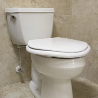 oversized-toilet-seat-feature-pic