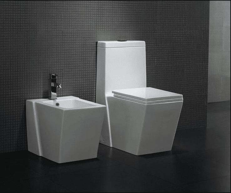 How To Repair Dual Flush Toilet