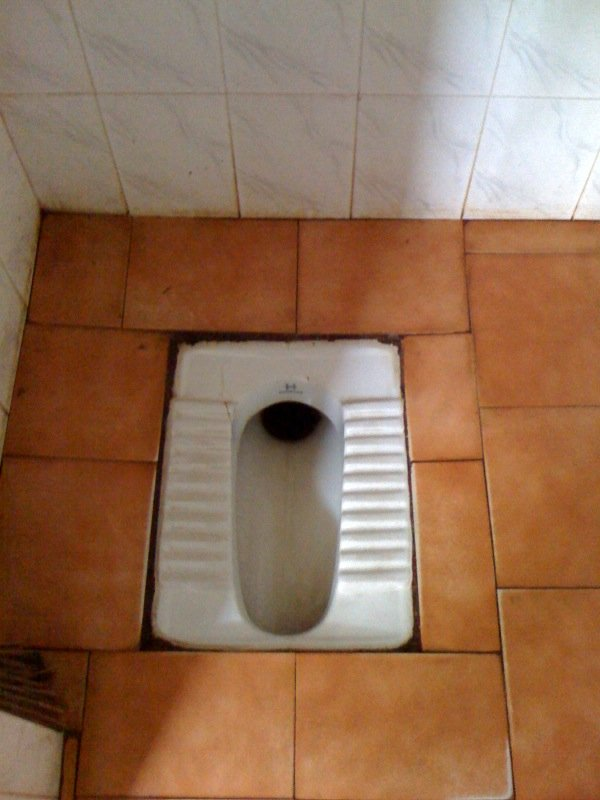 Fabulous Indian Toilet Toiletops Gmtry Best Dining Table And Chair Ideas Images Gmtryco