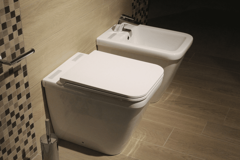 traditional bidet and toilet combination