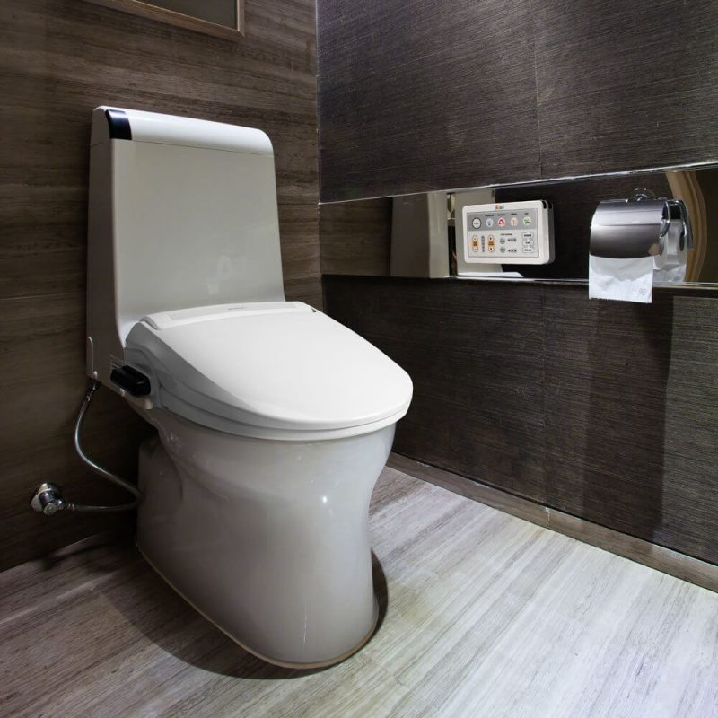 a sophisticated looking toilet and bidet with a remote