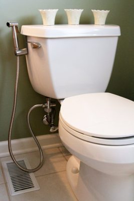 toilet with a hand held bidet attachment